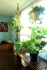 amy noah s mcm ranch house in portland maine sq ft plants