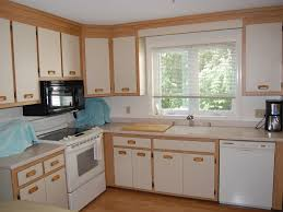 Kitchen Without Backsplash Red Oak Wood Yardley Door Kitchen Cabinets Without Doors