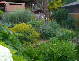 Landscape Mounds Front Yard - love to garden but live in a place with a tiny yard a little