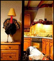 thanksgiving turkey picture jokes and stories