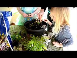 10 step fairy garden for kids youtube