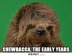 Chewbacca Memes - chewbacca memes funny chewbacca pictures memey com
