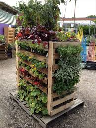 How To Build A Vertical Garden - vertical pallet herb garden 6 winsome design how to build a