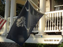 Moultrie Flag Historycharleston Flags Over Charleston