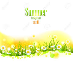 Summer Flowers by Bright Summer Flowers Background With Space For Text Royalty Free