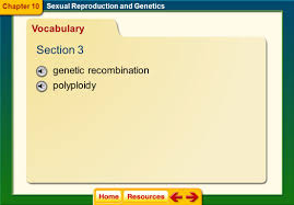 chapter 10 sexual reproduction ppt download