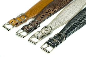 afghan hound collars uk dark brown python leather hound collar