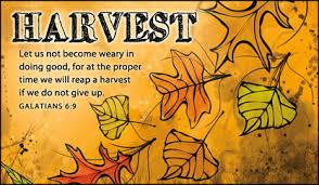 thanksgiving praises and prayer requests ciliberti communique live