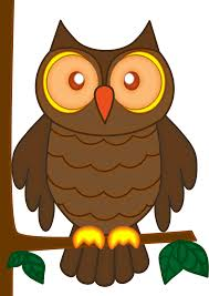 desert owl coloring page owl coloring page clipart clip art library