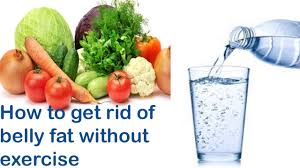 how to get rid of belly fat without exercise how to get rid of