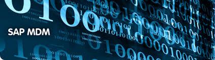 Sap Mdm Resume Samples by Sap Mdm Training Online Sap Mdm Online Training