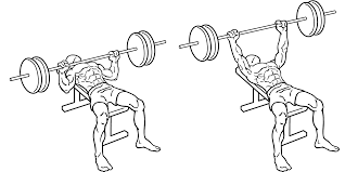 Flat Bench Press Dumbbell Top 5 Superset Exercises The Pulse
