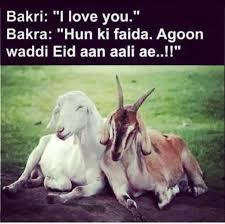 Eid Memes - the typical eid ul adha memes ary zauq official recipes
