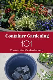flower gardening 101 container gardening 101