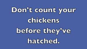 Count Your Chickens Before They Hatch Meaning Don T Count Your Chickens Before They Ve Hatched