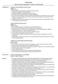 sle resume for client service associate ubs description meaning client services specialist resume sles velvet jobs