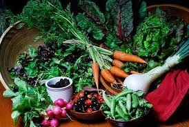 time to begin a fall vegetable garden and to attend plant clinic