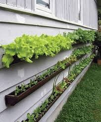 vertical gardens 20 vertical gardening ideas for turning a small space into a big