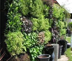 earth u0026 water living garden walls