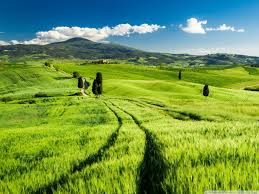 bright tuscany hd desktop wallpaper widescreen fullscreen