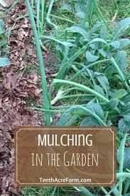 201 best mulch images on pinterest mulches garden mulch and