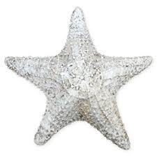 starfish decorations buy starfish decorations from bed bath beyond