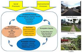 sustainability free full text synthesis of household yard area