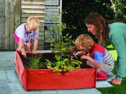 childrens vegetable garden kit planter soil u0026 seeds