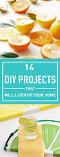 I Want To Be An Interior Designer by 329 Best Diy Decor Images On Pinterest Crafts Home And Diy