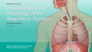 Anatomy And Physiology Of Lungs A D A M Ondemand Understanding The Physiology Of The