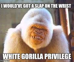 Slap Meme - i would ve got a slap on the wrist white gorilla privilege meme