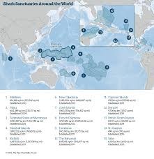 Cayman Islands Map In The World by Shark Sanctuaries 1117 Png La U003den