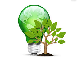 green light bulb and tree psd