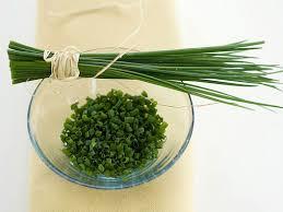 erba cipollina in vaso come coltivare l erba cipollina