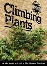 Climbing Plants For North Facing Walls - climbing plants choosing climbers gardening advice