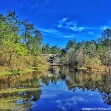 Mississippi natural attractions images Arboretum outdoor family attractions in picayune mississippi jpg