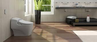 Images Of A Bidet Dib Special Edition Advanced Bidet Toilet Seat Bio Bidet