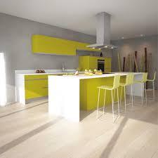 cuisine vert anis cuisine vert anis avec beau collection avec peinture cuisine vert