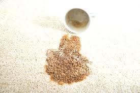 tache de caf sur canap tissu de caf sur canap tissu 7 avec comment enlever une cdiscount et cafe