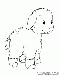 coloring page sheep and goats