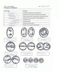 Bill Nye Matter Worksheet Please Check My Science Worksheet To See If I Labelled The Phases