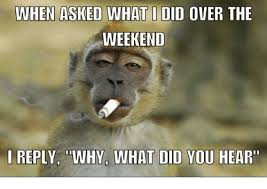 Overeating Meme - when asked what did over the weekend i reply why what did you hear