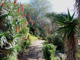 Ucr Botanical Gardens Gardens In California Usa