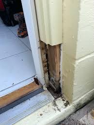 Exterior Door Casing Replacement Front Doors Appealing Replacing A Front Door For Trendy Door