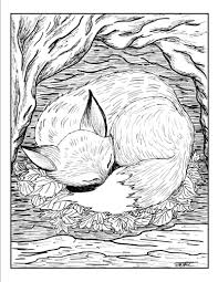 new fox coloring pages awesome coloring learni 1332 unknown