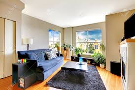 living room with navy sofa coffee table and soft rug view of