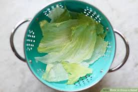 how to dress a salad 9 steps with pictures wikihow