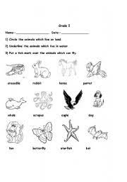 17 best images of different animal habitat worksheets animal