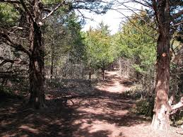 oklahoma forest images Oklahoma forestry association home page jpg