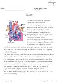 primaryleap co uk science worksheet reading comprehension with